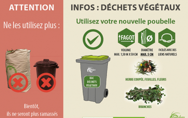 Ce qu'il faut savoir sur les déchets végétaux !