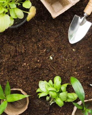 Semaine du jardin durable