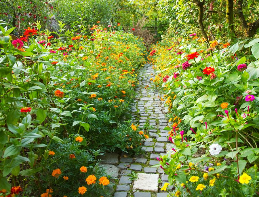 Rendez-vous aux jardins !